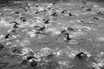 natation bassin de la villette